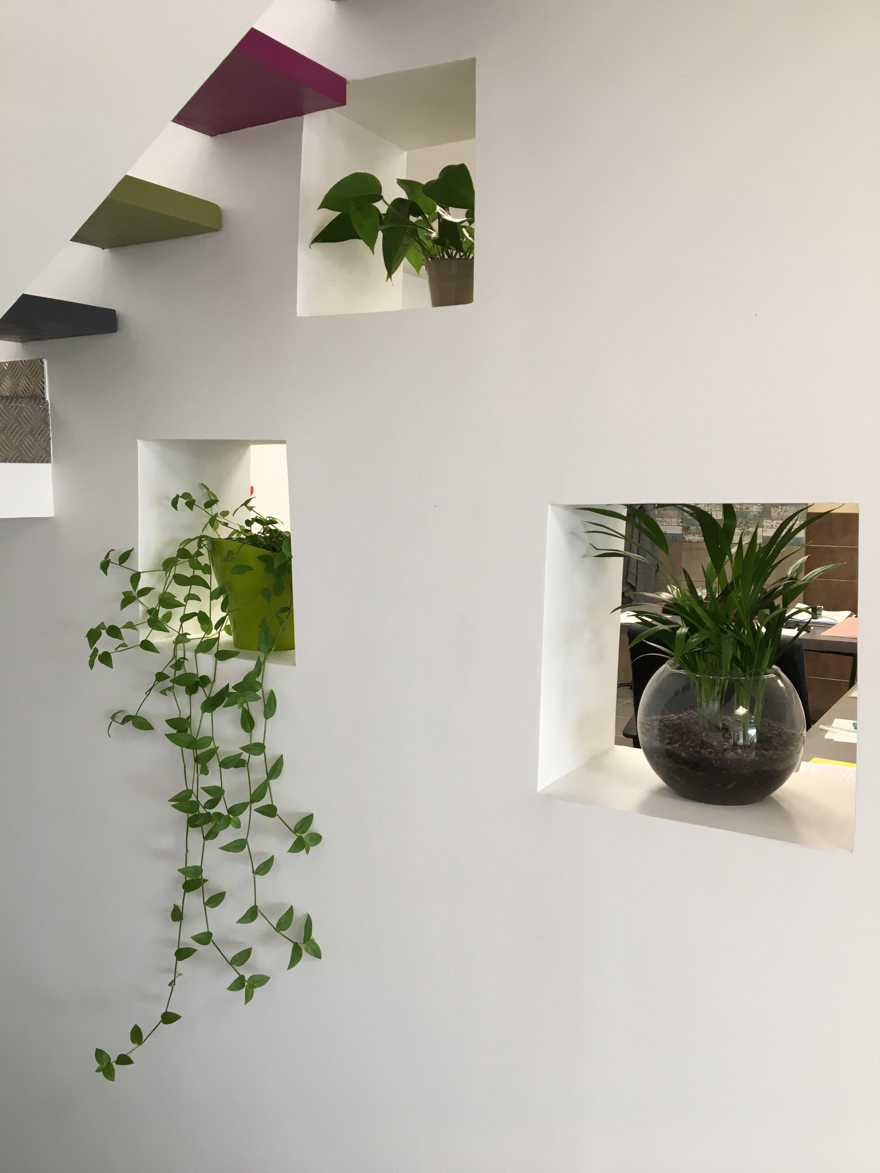 cr ation de niches de rangement dans un mur existant soyaux 16800. Black Bedroom Furniture Sets. Home Design Ideas